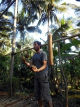 Moments before the coconuts fall onto my foot