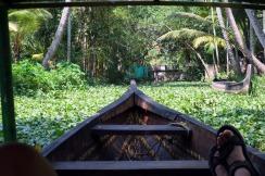 Backwaters in Alleppey, Kerala